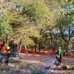Canopy Tree Service crew clears trees for an expanded Mission Espada hike and bike trail. Tree removal is necessary for the 10 foot wide trail.